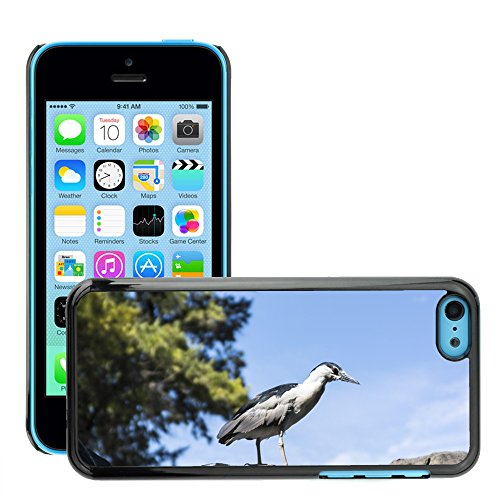 Just Phone Cover Hard plastica indietro Case Custodie Cover pelle protettiva Per // M00139849 Oiseaux de dinosaures Zoo // Apple iPhone 5C