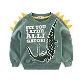 Rebavl Toddler Boys Long Sleeve Pullover Sweatshirts Cartoon Dinosaur T-Shirt Tops Kids 2-7 Years …