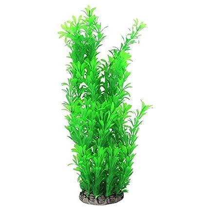 Amazon.com : eDealMax acuario plástico del tanque Artificial Decoración hierba planta pesquera 36cm Altura Verde : Pet Supplies
