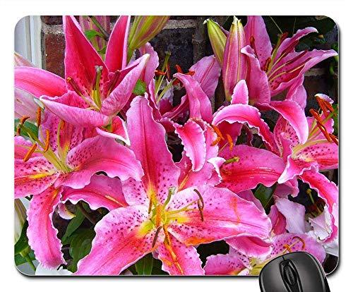 Stargazer Garden - Mouse Pad - Stargazer Lily Oriental Flower Pink Garden Flora