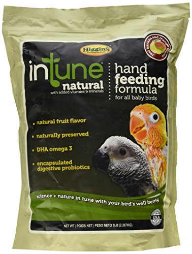 Top 10 Natural Parrot Food Higgins