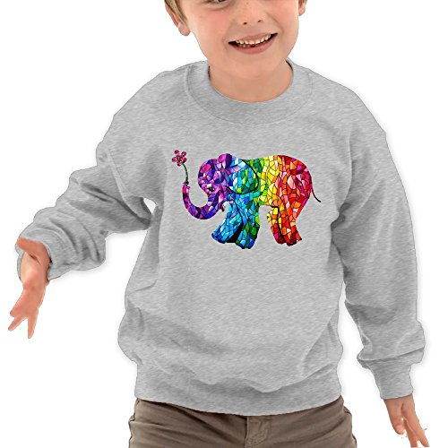 Puppylol Colorful Happy Elephant Kids Classic Crew-neck Pullover Hoodie Ash 3 Toddler