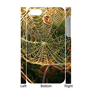3D iPhone 4/4s Case,Spider Web Close Up Hard Shell Back Case for White iPhone 4/4s