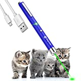 Single Point Laser pen pet cat toy wavelength 532nm, outdoor Tactics LED high power green light beam interactive training tools