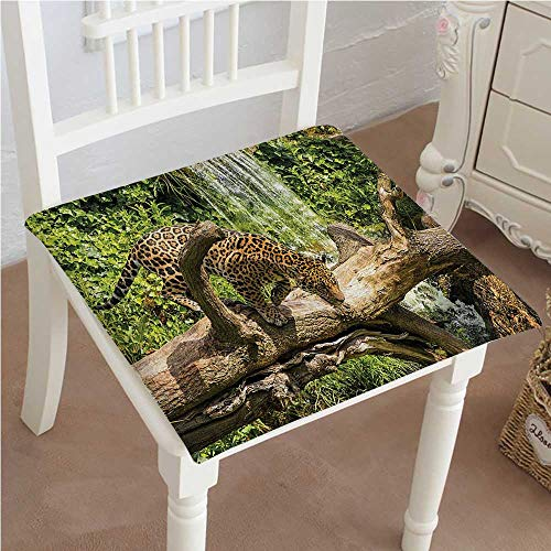 (Mikihome Chair Pads Classic Design Safari Jaguar Cat on a Tree Trunk Endangered Species Wild Life Cotton Canvas Futon 30