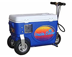 30 Qt. 1000W Scooter Electric Cooler Color: Blue