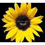 サヨナラホームラン(初回生産限定盤)(DVD付)