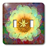 3dRose lsp_32380_2 Decorative Colorful Garden Sw Southwest Desert Cactus Red Green Gold Flower Abstract Pastel Cartoon Double Toggle Switch