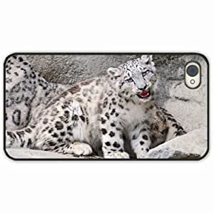 iPhone 4 4S Black Hardshell Case ounce mouth rocks snow leopard Black Desin Images Protector Back Cover