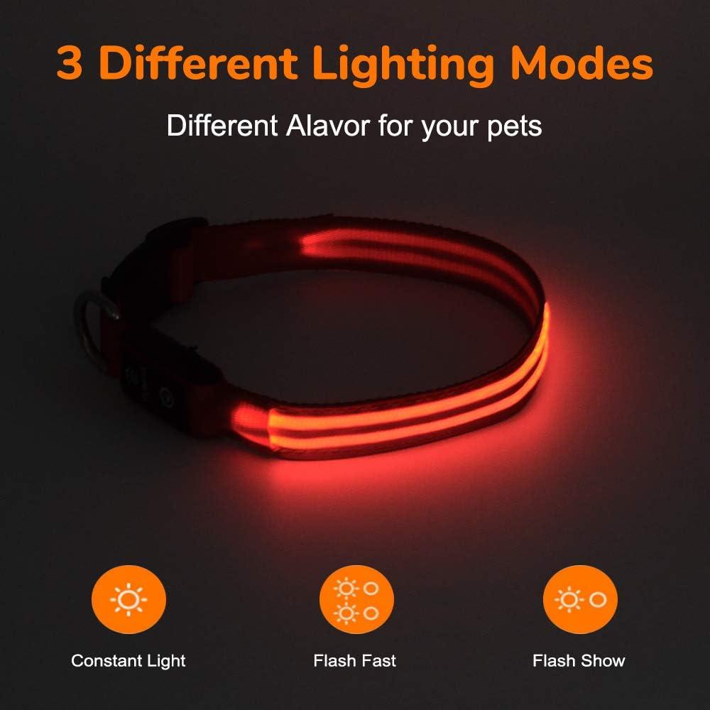 leuchtendes Hundehalsband 100/% wasserdichtes mittlere und gro/ße Hunde Pumila Led Hundehalsband wiederaufladbar Blinklichthalsband f/ür kleine