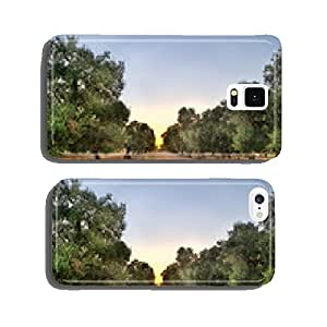 Puglia, Italy, Olive trees cell phone cover case iPhone5