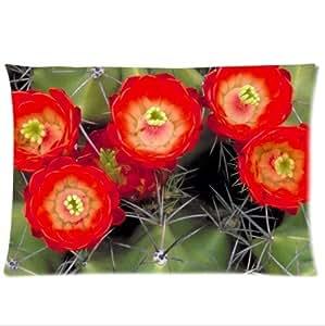 Beautiful Cactus Flower Design Desert Cactus Sunset Pillowcase,New Pillow Case Pillow Inner Included 20x30(One side) wangjiang maoyi