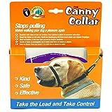 Canny Anti-Pull Dog Collar (Size 1) (Purple)
