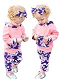 Doding Baby Girls Clothes Set Long Sleeve Floral Hoodie Tops and Pants with Bowknot Headbands Outfits Set 0-3 Months
