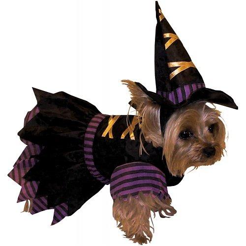 Forum Novelties Witch Pet Costume, Small