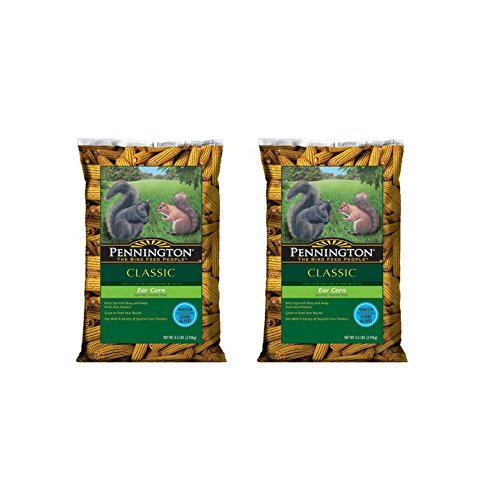 Pennington Ear Corn on Cob Squirrel Food, 6.5-Pound - (2 Pack)