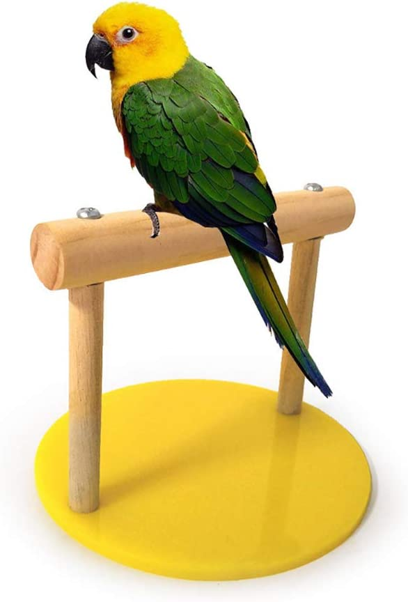 Dibiao Bird Wooden Perch Standing Frame Stand Pet Standing Playground Training Toy for Parakeet Cockatiel