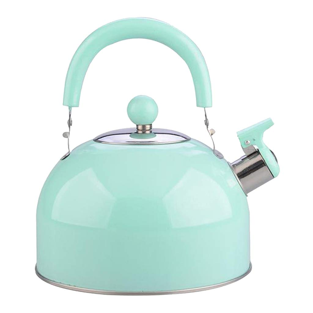 2.5L Stainless Steel Whistling Tea Kettle Coffee Kitchen Induction Green