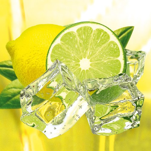 Platin Art Glass Wall Decor, Fresh Lemon and Lime, 20 by 20-Inch