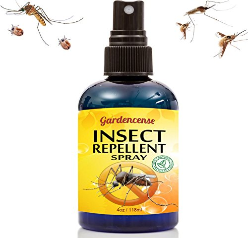 Insect Repellent Spray - Best Mosquito & Bug Skin Protectant - Safe For Kids