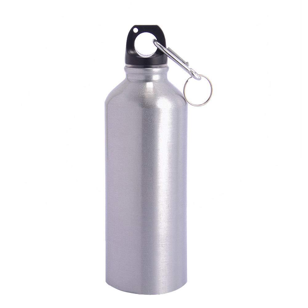 Hippicity クラシックステンレススチールウォーターボトル 500ml 単壁 漏れ防止ループキャップ付き B07K5YDR9X シルバー