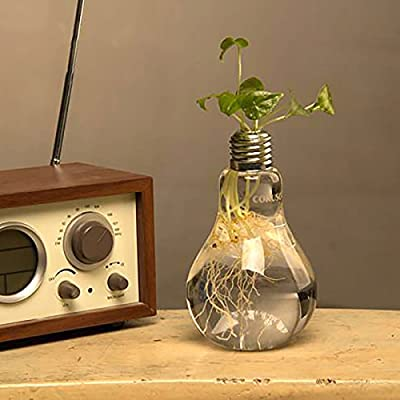 Ivolador Lightbulb Glass Flower Planter Vase Terrarium Container Office Home Garden Décor - Retro and Simple Lightbulb shape ! It helps beautify and purify your house or office, a good decoration for you It will be more beautiful and eye-catching if you put some cobbles or flowers into it when a expression of love,dating,a party, a birthday party, a wedding;Some restaurants use it for drink-- An interesting and beautiful drink. A hole on the top. Easy to plant. - vases, kitchen-dining-room-decor, kitchen-dining-room - 51Qzm%2ByqgqL. SS400  -