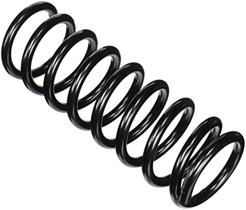 Amazon Com Moog 81005 Coil Spring Set Automotive