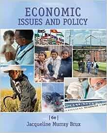 Economics of Public Issues, 20th Edition