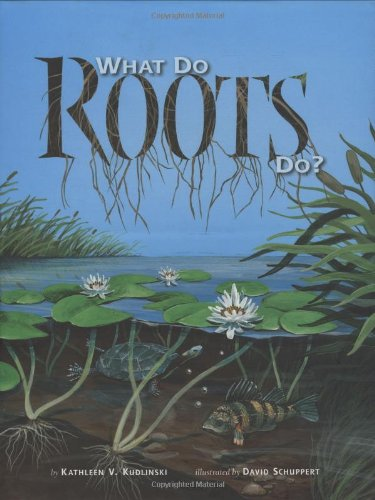 Download What Do Roots Do? pdf epub