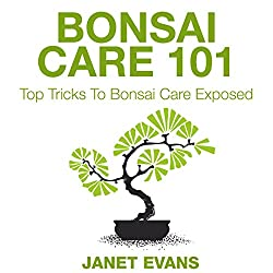 Bonsai Care 101