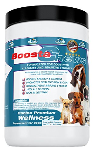 Nutritional Supplements for Dogs - Cleo BoostaChews the All-in-one Complete Dietary Vitamins and Minerals Chews to Enhance Overall Wellness of Small to Medium Canines: 1 Lb Tub (Approx 200 Nuggets)