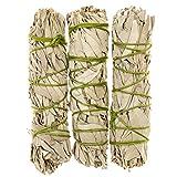 Mini California White Sage Smudge Sticks - 3 Pack, Alternative Imagination Brand