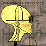 Seeing By the Light of My Own by Rob Reddy (2001-05-22)