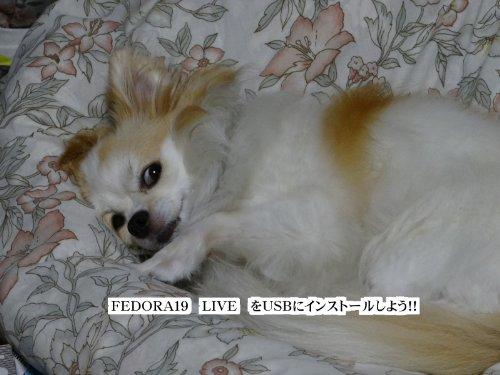 Download fedora19raibuwousbniinsuto-rushiyou (Japanese Edition) Pdf