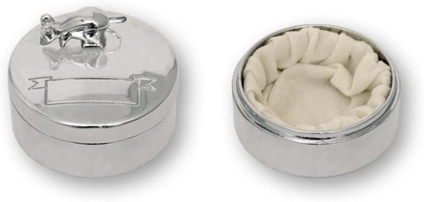 Caja RATONCITO PÉREZ de acero para dientes de leche. Dakota. 1 unidad: Amazon.es: Hogar