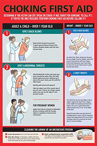 Choking First Aid Poster for Kids and Adults, Infants, Pregnants, 12' x 18