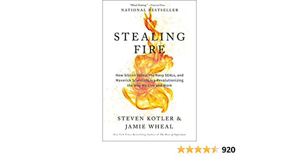 Stealing Fire: How Silicon Valley, the Navy Seals, and Maverick ...