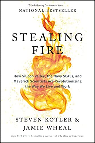 image for Stealing Fire: How Silicon Valley, the Navy SEALs, and Maverick Scientists Are Revolutionizing the Way We Live and Work