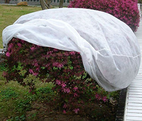 agfabric-2-pack-of-95oz-plant-protecting-bag-for-frost-protection-h40xdia60