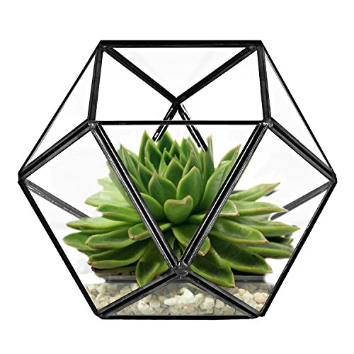 Geometric Design Terrarium Tealight Candle