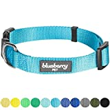 Blueberry Pet 32 Colors Classic Dog Collar, Medium Turquoise, X-Small, Neck 7.5'-10', Nylon Collars for Dogs