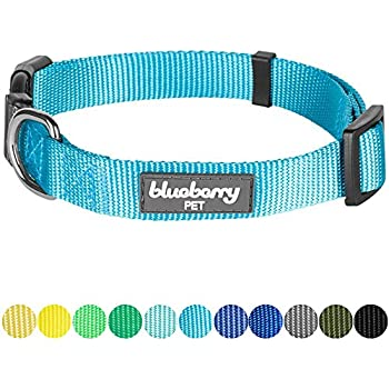 "Blueberry Pet 32 Colors Classic Dog Collar, Medium Turquoise, Small, Neck 12""-16"", Nylon Collars for Dogs"