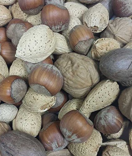 Mixed Nuts - No Brazils - In Shell - 25 lb.