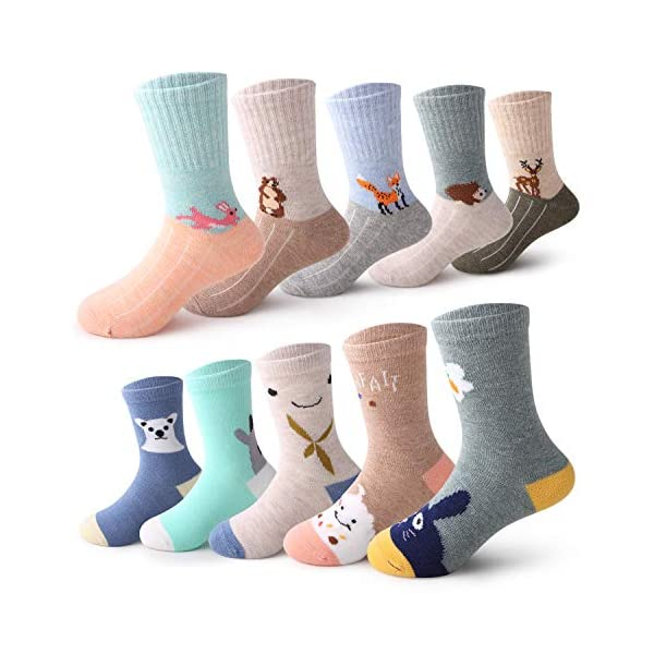 Kerrian Online Fashions 51R%2BvZKI1RL Seekay Boys' 10 Pairs Colorful Fashion Cotton Crew Socks