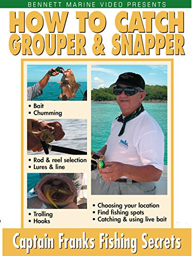 & Snapper (Grouper Snapper)