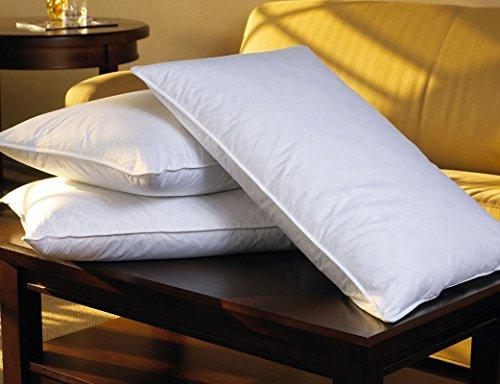 sheraton-hotel-king-feather-down-pillow
