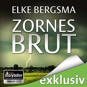 Zornesbrut (Büttner und Hasenkrug ermitteln 17): Ein Ostfrieslandkrimi Hörbuch von Elke Bergsma Gesprochen von: Jürgen Holdorf