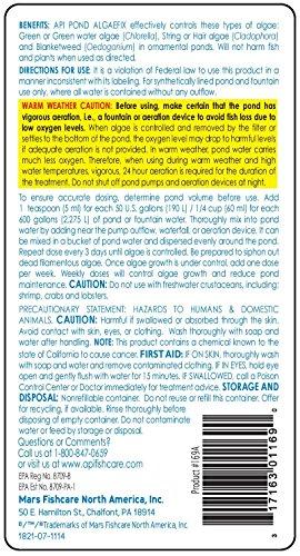 API-POND-ALGAEFIX-Algae-Control-Solution-8-Ounce-Bottle