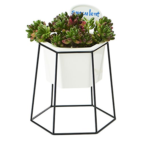 Planter Pot Indoor, Flowerplus 5 Inch White Ceramic Medium Succulent Cactus Flower Plant Hexagon Pots with Metal Stand Holder and Plants Sign for Indoors Outdoor Home Garden Kitchen Decor (Black)