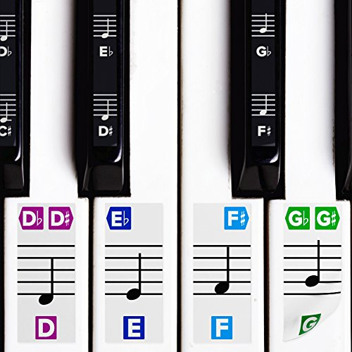 Color Piano Stickers w/Complete Notes on Grand Staff for 49/61 / 76/88 Keyboards